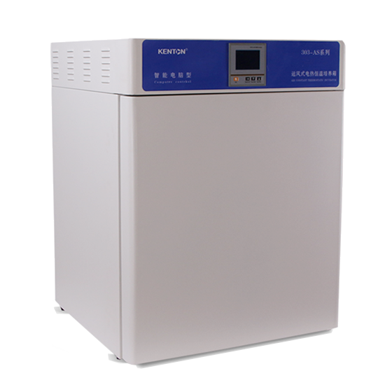 Electric thermostat incubator